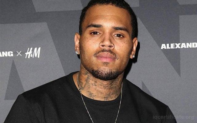 Chris Brown IQ Score
